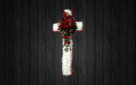 Red Roses - CRO35