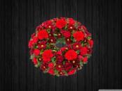 Red Sky - WRE1