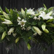 All White Lilies - CSK33