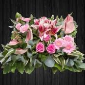 Exotic Pinks - CUS1