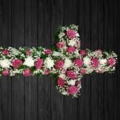 Pink Paradise - CRO31