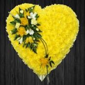 Yellow - HEA28