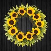 Sunflowers - WRE23