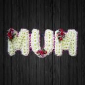 Ma - MUM6