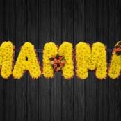 Mamma - MUM11