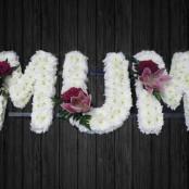 Shared Love - MUM17