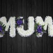 Lilac Rose - MUM22