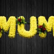 Yellow Brick Road - MUM36