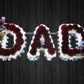 Claret & White - DAD6