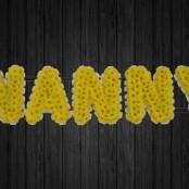Nanny - NAN5