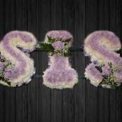 Lilac - SIS8