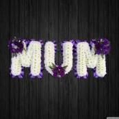 Lavender - MUM45