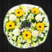 Yellow & White - WRE106