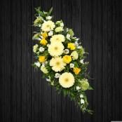 Yellow, White & Cream - SPR121