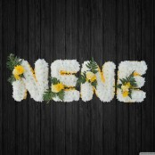 NENE - NAN35