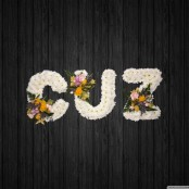 Cuz 2 - NAL12