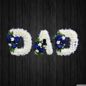 Spurs Fan - DAD64