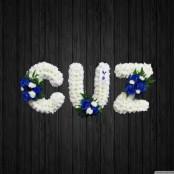 Cuz 3 - NAL13