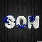 Blue Is The Colour - SON29