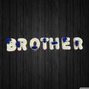 Blues Brother - BRO22