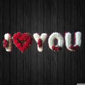 I Love You 2 - NAL15