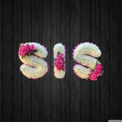 Aqua Is Pink - SIS11