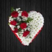 Solid Love - HEA122