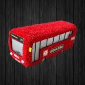 Single Decker Bus