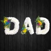 Rainbow Dad - DAD74