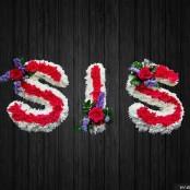 Big Sis - SIS12